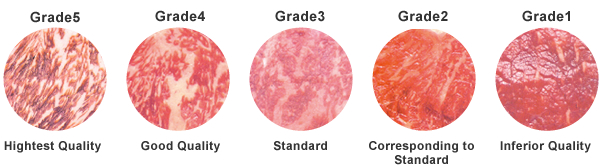 Beef quality grade pictures
